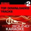 Sing Top Download Tracks, Vol. 2 (Karaoke Performance Tracks)