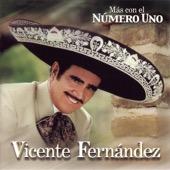 Vicente Fernández