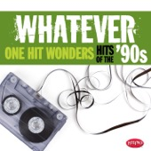 Various Artists - Whatever: One Hit Wonders of the '90s  artwork