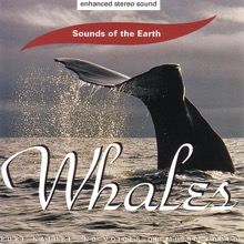 Sounds of the Earth: Whales, Sounds of the Earth