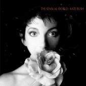 Kate Bush - This Woman's Work