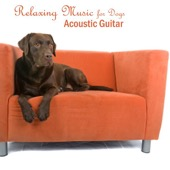 Acoustic Guitar Songs - Relaxing Music for Dogs - Acoustic Guitar Songs  artwork