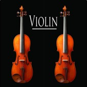 violin - Violin  artwork