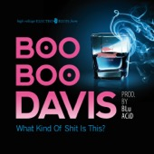 Boo Boo Davis - What Kind of S**t Is This?  artwork