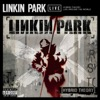 Hybrid Theory - Live Around the World