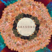 Tony Anderson - Seasons  artwork