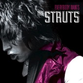 The Struts - Live in Concert
