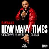 DJ Khaled - How Many Times (feat. Chris Brown, Lil Wayne, & Big Sean)  artwork