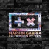 Forbidden Voices - Single