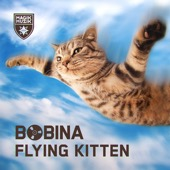 Flying Kitten - Single