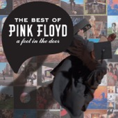 A Foot In the Door: The Best of Pink Floyd (Remastered) - Pink Floyd, Pink Floyd