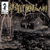 Buckethead - Calamity Cabin  artwork