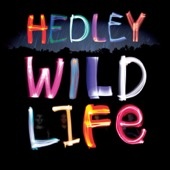 Hedley - Pocket Full of Dreams artwork