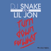 DJ Snake & Lil Jon - Turn Down For What  artwork