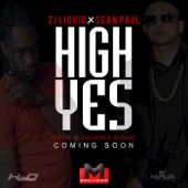 High Yes (feat. Zj Liquid)