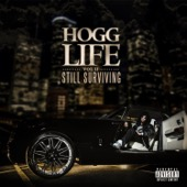 Slim Thug - Hogg Life, Vol. 2: Still Surviving  artwork