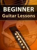 Marty Schwartz - Beginner Guitar Lessons  artwork
