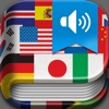 iHandy Translator Pro for iPhone