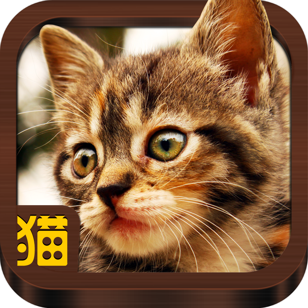 うごく猫 -激かわ猫満載のうごく猫GIFまとめアプリ。毎日更新される爆笑ねこGIFや癒しねこGIFがいつでも見れる-