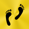 Palm Shadow Apps LLC - Footsteps - Pedometer artwork