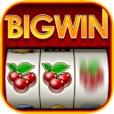 【赌场游戏】大赢家:Big Win Slots