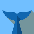 Flipper -  ミラーイメージ反射エディタ