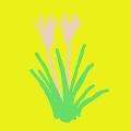 シンプル野草リスト