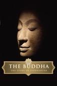 David Grubin - The Buddha - The Story of Siddhartha  artwork