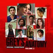 Grey's Anatomy, Vol. 2 (Original Soundtrack)