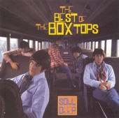 The Box Tops - The Letter artwork
