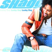 Het Sexy Lady (feat. Brian & Tony Gold) - Shaggy