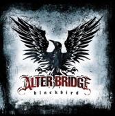 Alter Bridge - Watch Over You  arte