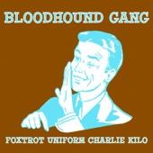 Foxtrot Uniform Charlie Kilo (The Remixes) - EP cover art