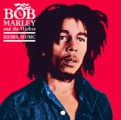 So Much Trouble In the World - Bob Marley & The Wailers