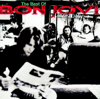 Crossroad - The Best of Bon Jovi - Bon Jovi