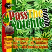 Pass the Kutchie (D&B Dubplate) - Benny Page & Mr. Williamz