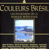 Couleurs Brésil (Les standards de la musique Brésilienne)