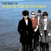The Best of Echo & the Bunnymen - Echo & The Bunnymen