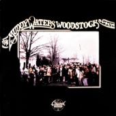 Muddy Waters - The Muddy Waters Woodstock Album  artwork