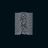 Unknown Pleasures (Collector's Edition)