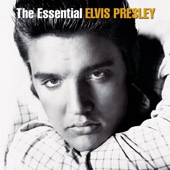 Elvis Presley - Can't Help Falling In Love  artwork