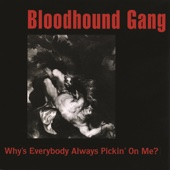 Why's Everybody Always Pickin' On Me? - Single cover art