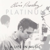 Platinum: A Life In Music cover art