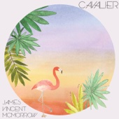 James Vincent McMorrow - Cavalier artwork
