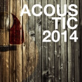Acoustic 2014 - Various Artists