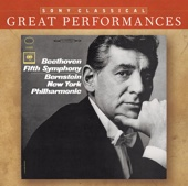 Beethoven: Symphony No. 5; Leonard Bernstein Talks About Beethoven's First Movement of the Fifth Symphony [Great Performances]