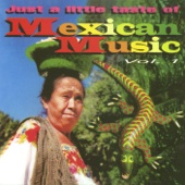 Just a Little Taste of Mexican Music, Vol. 1
