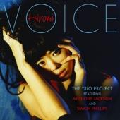 Voice (feat. Anthony Jackson & Simon Phillips)