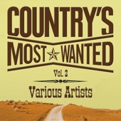 Grand Ole Country Live, Vol. 2