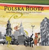 Polska Rootz Various Artists Ustaw na halo granie